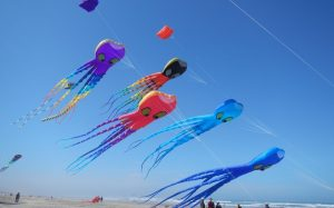 feature-inflatable-kites