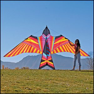 ITW Sky Bird Kite (by George Peters)