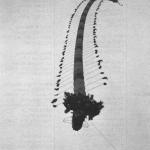 1988 Grand Champion:  Elmer Wharton - Centipede