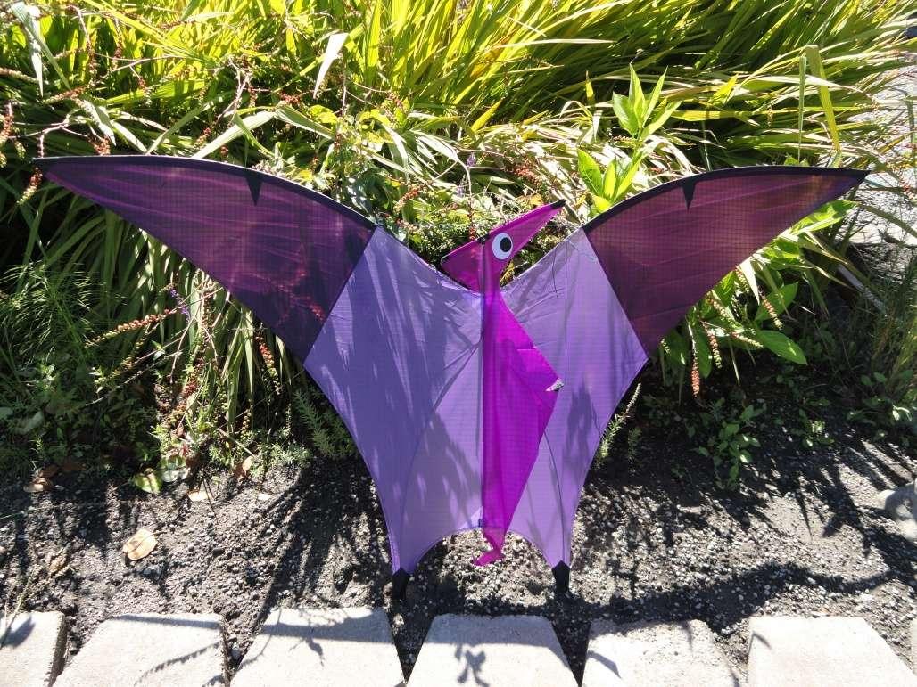 Raffle pterodactyl by karl longbottom x2 raffles for Indoor kite design