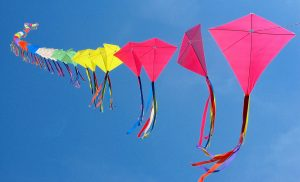 kites_flying_images_1024x768__66461
