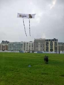 Boris kite